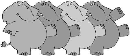 chorus: Elephant Chorus Line