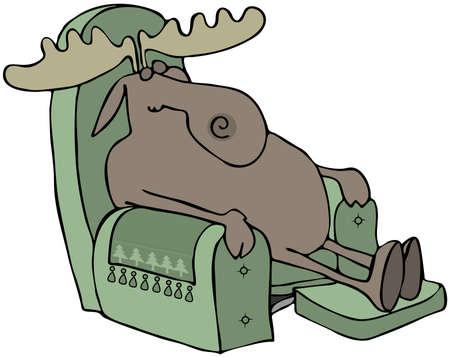Slapen Moose in een stoel Stockfoto