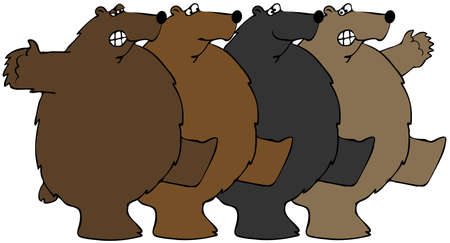 cancan: Bears dancing the Can-can Stock Photo