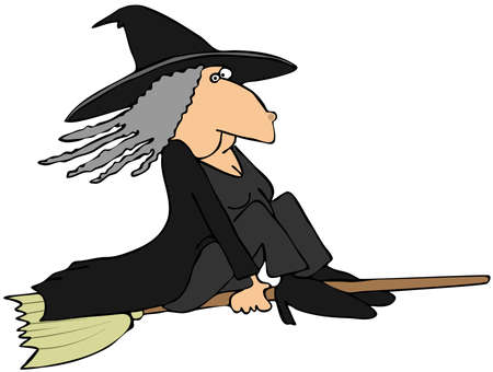 wart: Witch on a broom