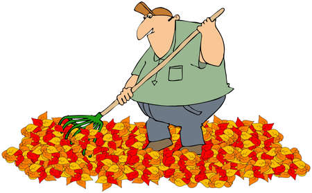 raking: Raking autumn leaves