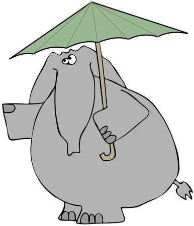 Olifant regen controleert