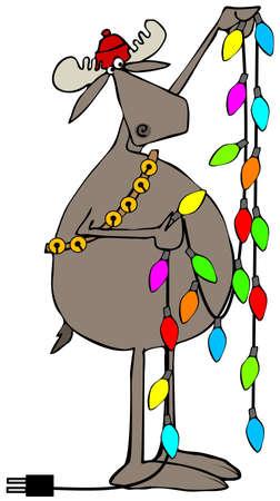 handling: Moose handling Christmas lights