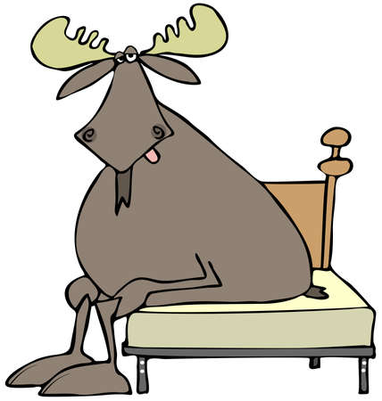 Moe moose zittend op een bed Stockfoto
