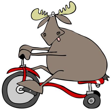 Moose op een driewieler