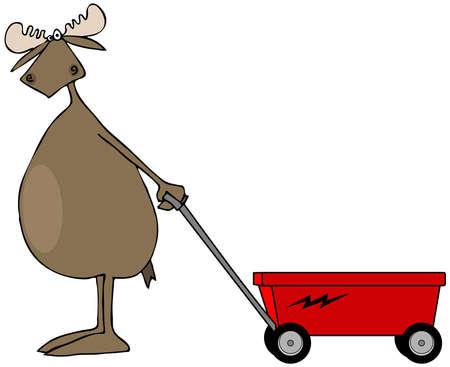 Bull moose trekken een rode wagen