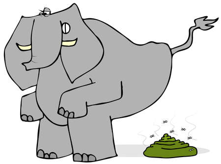 crap: Elephant taking a crap