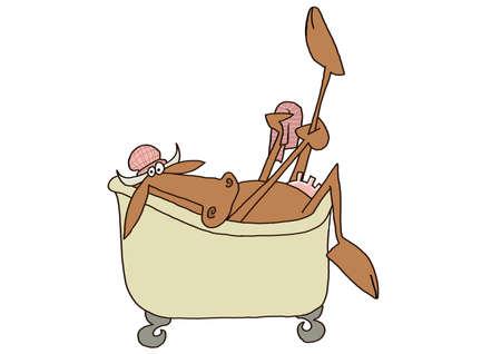 udder: Cow in a bathtub