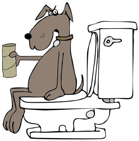 papel de baño: perro estresado sin papel higiénico Foto de archivo
