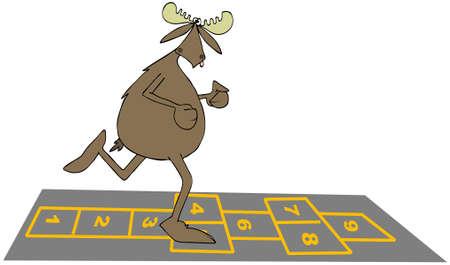 Bull moose playing hopscotch