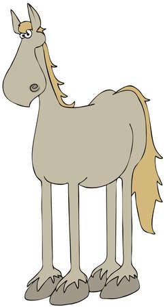 beige: Beige horse Stock Photo