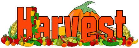 과일과 채소의 삽화와 단어 수확의 삽화가 interspersed. 스톡 콘텐츠