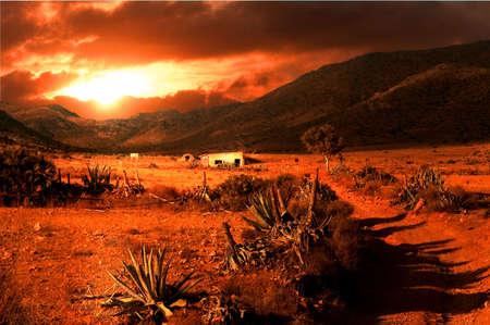 feld: paradoxal beauty of desertification Stock Photo
