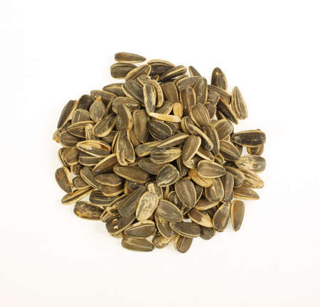 satisfying: A group of sunflower seeds, great snack food. Stock Photo