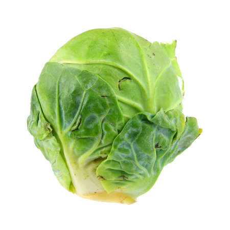 known: A single cabbage bud known as a brussel sprout.
