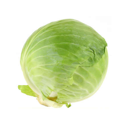 A front view of a fresh head of green cabbage. photo