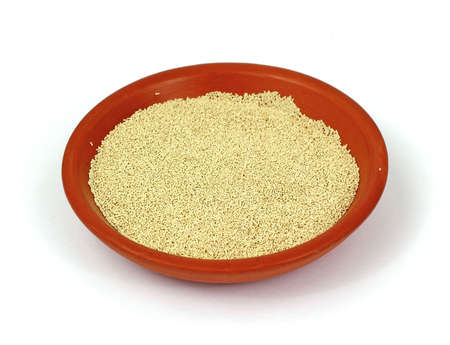 leavening: A small pottery bowl of active dry yeast.