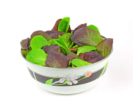 romaine: Fresh young baby romaine lettuce leaves in a bowl.