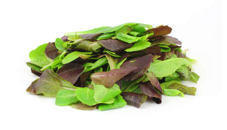 romaine: A stack of colorful baby romaine lettuce leaves.  Stock Photo