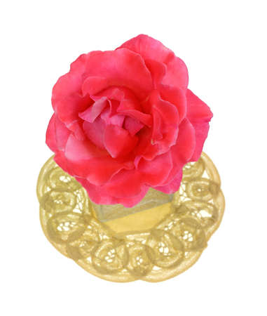 Looking down at a single pink rose on doily  Stock Photo - 14623835