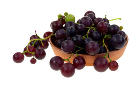 home grown: Small cut branches of ripening home grown grapes in a clay pottery dish