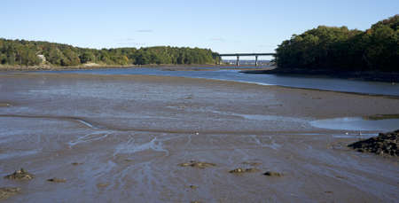 A late afternoon low tide in Belfast, Maine  Stock Photo - 15826235