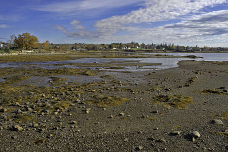 A view of the town of Searsport, Maine at low tide  Stock Photo - 17667186