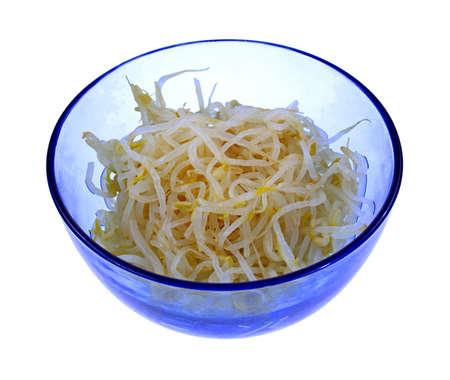 A blue glass bowl of canned bean sprouts  Stock Photo - 18198073