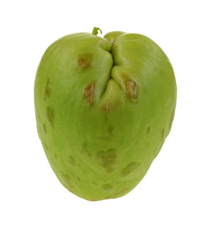 indentation: A nice view of chayote vegetable with deep top indentation and stem.