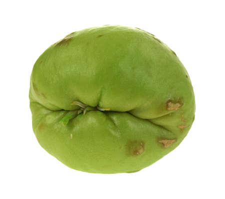 indentation: A nice view of the deep indentation on the top of a chayote vegetable. Stock Photo