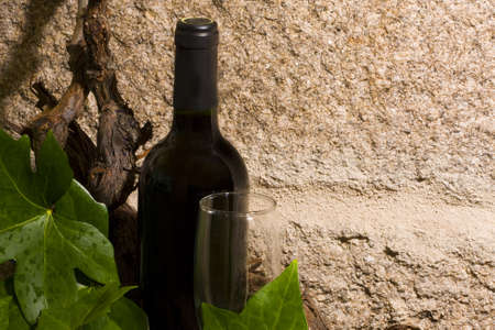 wine Stock Photo - 9255825