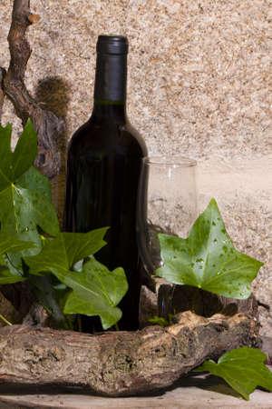 wine Stock Photo - 9255540