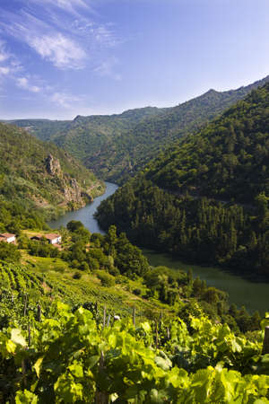 sil: canyon of sil, spain Stock Photo