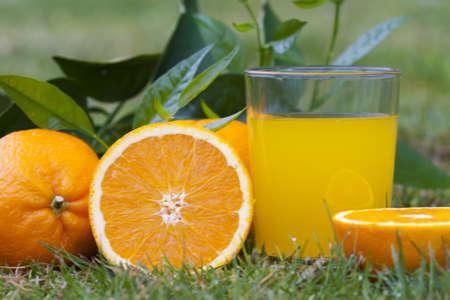 Sinaasappelsap, gezondheid en een uitgebalanceerd dieet Stockfoto - 9489699
