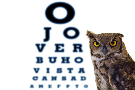 myopic: letters owl eye doctors office