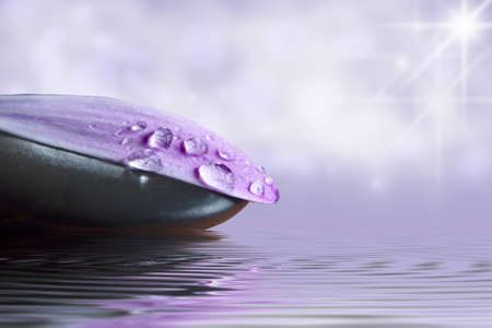Petalo de la flor con gotas de agua y la reflectie