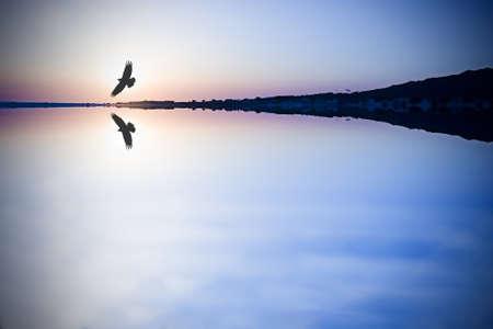 fondo azul: aves silueta en el horizonte de las montañas y el mar azul