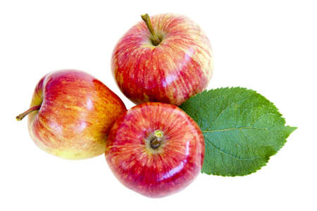 ripe red apples with leaves