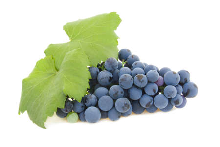 isolated cluster of grapes Stock Photo