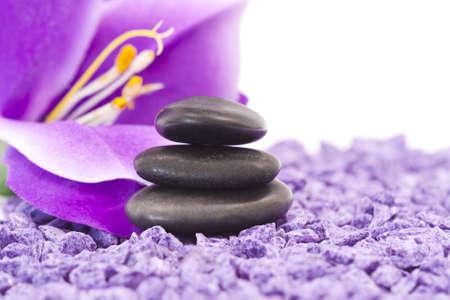 stones with purple flower photo
