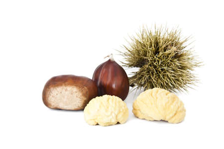 chestnuts fall season isolated on white background photo