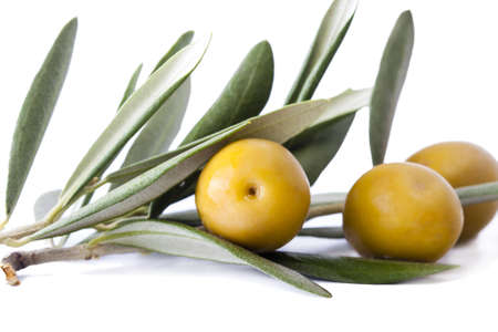 fresh olives on the olive branch isolated on white background photo