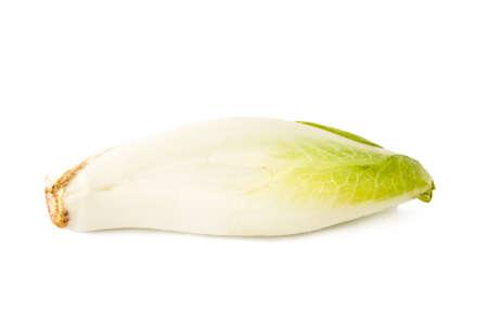 escarola: ensalada de escarola y frescas aisladas sobre fondo blanco