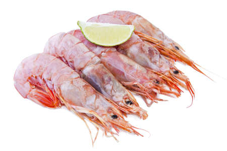 fresh seafood, shrimps and crustaceans Stock Photo - 11066064