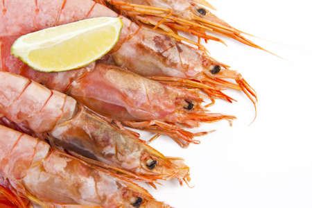 fresh seafood, shrimps and crustaceans photo
