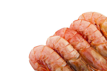 fresh seafood, shrimps and crustaceans Stock Photo - 11066065
