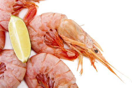 fresh seafood, shrimps and crustaceans Stock Photo - 11066070