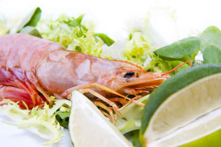 fresh seafood, shrimps and crustaceans Stock Photo - 11066068