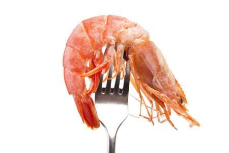 fresh seafood, shrimps and crustaceans Stock Photo - 11066051