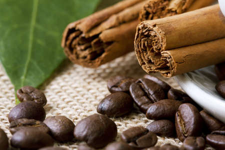 cafe scene, seeds, grains and spices Stock Photo - 11210828